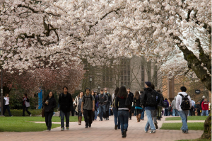 College of Education at University of Washington - Quad
